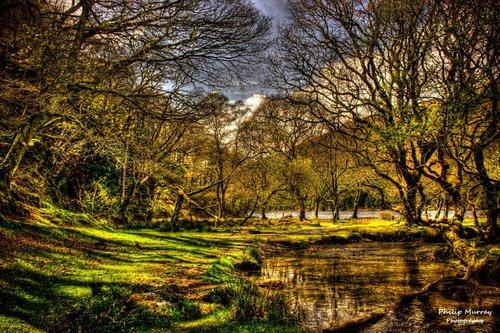 Philip Murray - Dream-Land-Escapes 2