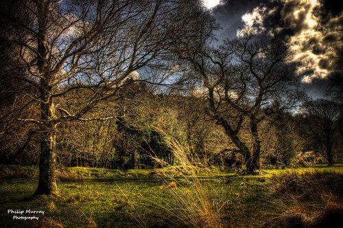 Philip Murray - Dream-Land-Escapes 3