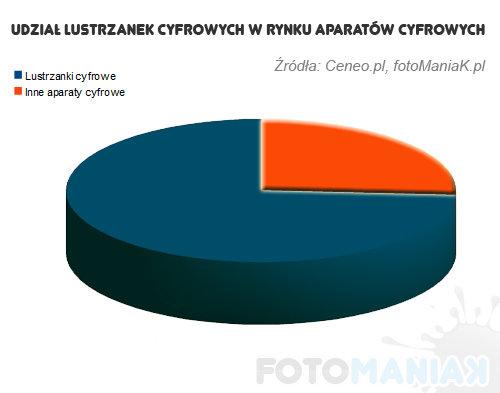 wykres2011-1