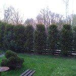 photo_2c2c9205-dcc5-ad8b-394b-54c09e4aed96