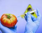 10 najbardziej szkodliwych produktów spożywczych odżywianie produkty spożywcze szkodliwe produkty spożywcze zdrowie