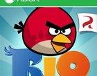 Angry Birds RIO Płatne Rovio windows phone store