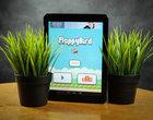 App Store Darmowe flappy bird usunięta flappy birds Google Play Gry usunięcie flappy bird