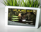 koniec internetu life of wolf MODECOM symulator wilka