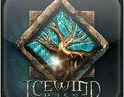 Beamdog Icewind Dale Icewind Dale Enhanced Edition Interplay Płatne rpg