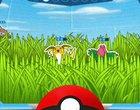 Darmowe pokemon Pokemon Camp pokemony