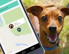 Najlepsze aplikacje dla posiadaczy psów