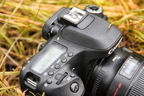 Canon EOS 80D/fot. fotoManiaK.pl