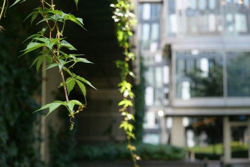 Zdjęcie zrobione aparatem Panasonic Lumix LX100 II / fot. fotoManiaK.pl