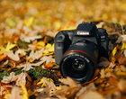 Canon EOS 90D - test lustrzanki. Solidny konkurent dla bezlusterkowców