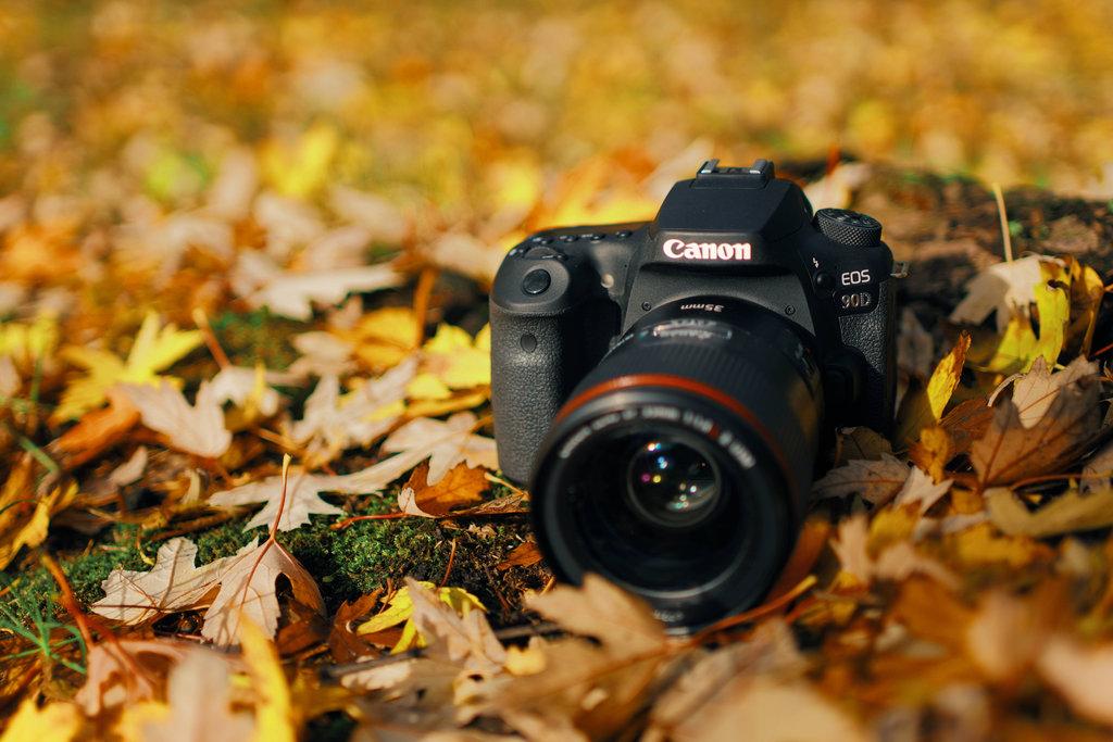 Canon EOS 90D/fot. fotoManiaK.pl