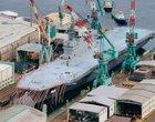 armia okręty wojskowość