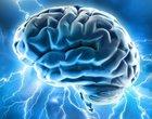 10 popularnych mitów o mózgu