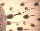 nasienie ojcostwo sperma