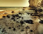 deszcz planetoid początki życia życie na Ziemi