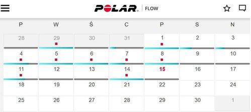 Polar Flow / fot. gsmmaniak.pl