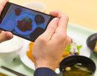Ta aplikacja przeanalizuje Twoje... jedzenie