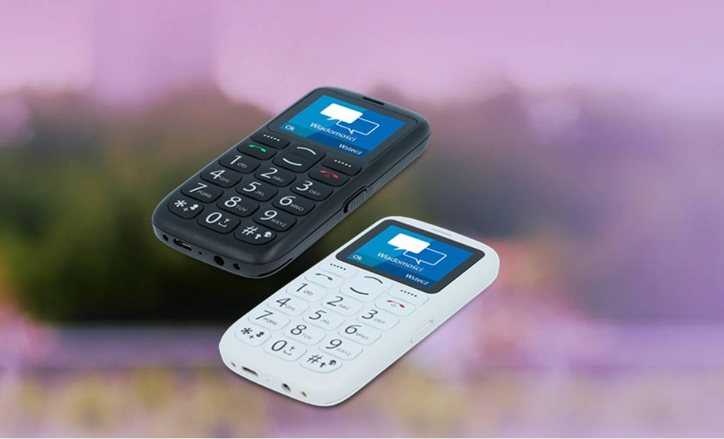 myPhone Simply 2