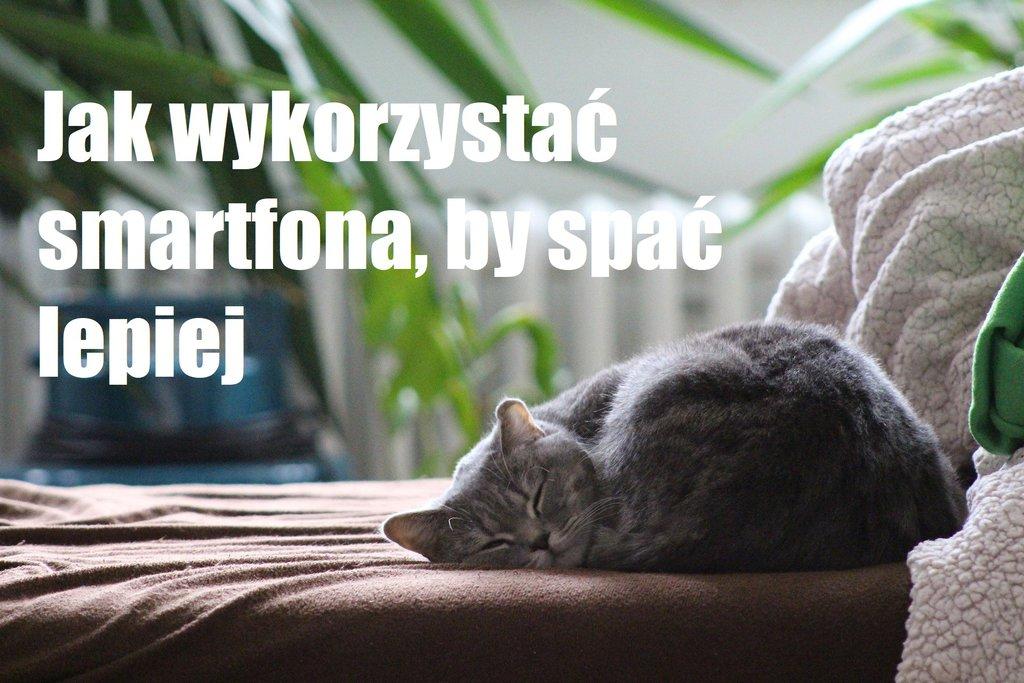Fot. Vnukko, Pixabay