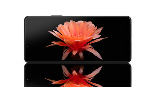 Sony Xperia 10 II / fot. producenta