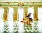 Bechstein Louis XV fortepian najdroższy fortepian na świecie