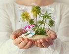 10 10 najpiękniejszych wysp na sprzedaż najpiękniejsze wyspy na sprzedaż wyspy wyspy do kupienia
