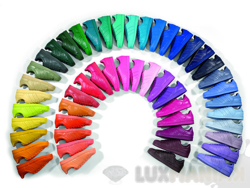 adidas superstar damskie kolor