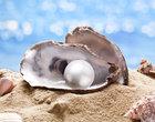 biżuteria z perłą perły wszystko o perłach