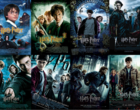 Harry Potter trafi na Netflix. Co z HBO GO?