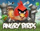 Angry Birds - historia prawdziwa