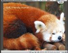 Firefox metro Mozilla