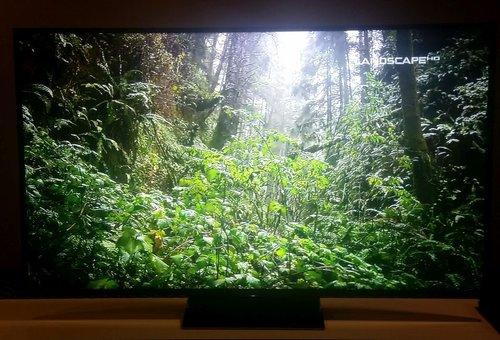 Sony KD-65ZD9 / fot. tvManiaK